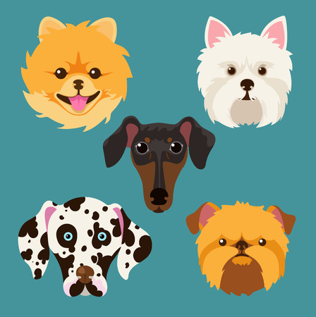 breeds: muzzle different breeds of dogs.Dog characters. Cartoon vector illustration.Set of 5 stickers different breeds dogs, handmade. Head dog. Icons with dogs.