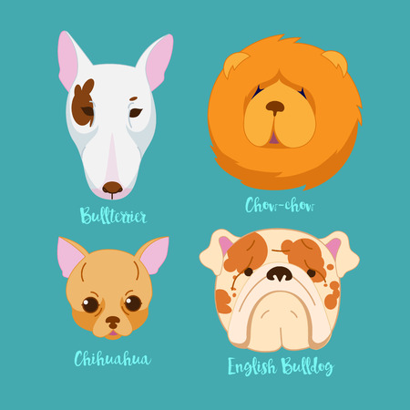 breeds: Different breeds of dogs.Dog characters. Cartoon vector illustration.Set of 4 stickers different breeds dogs, handmade. Head dog. Icons with dogs. Illustration
