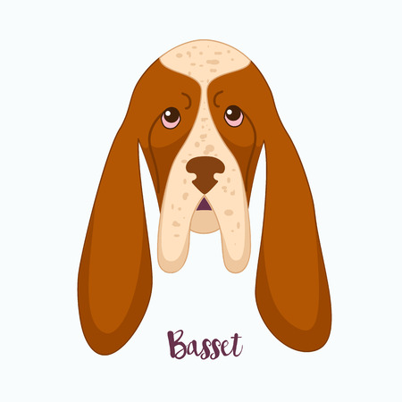 hound: Vector dog Basset Hound icon flat design.Dog characters. Cartoon vector illustration handmade. Head dog. Icon with dog isolated on white background.
