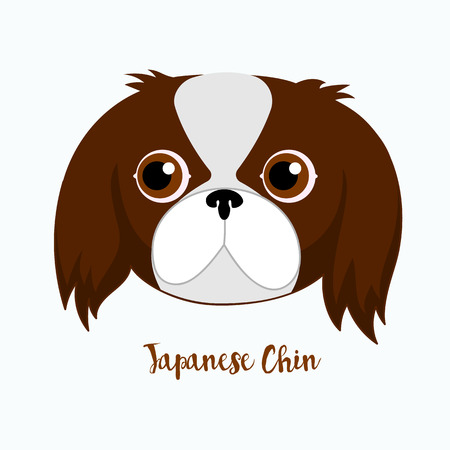 CHIN: Vector dog Japanese chin icon flat design.Dog characters. Cartoon vector illustration handmade. Head dog. Icon with dog isolated on white background.