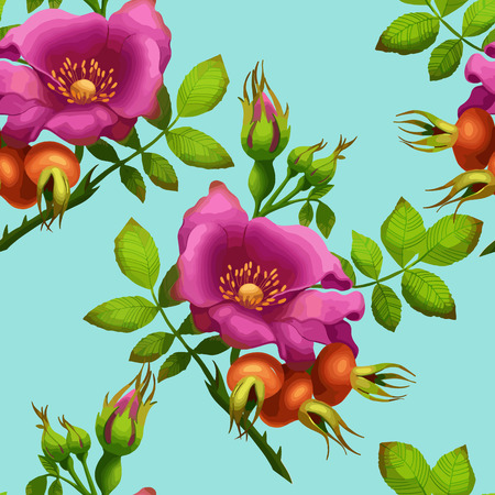 wild rose: seamless pattern of bright wild rose on a blue background