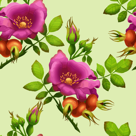 rose hips: seamless pattern of rose hips on a bright light green background