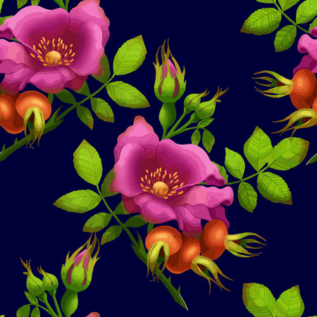 rose hips: seamless pattern of bright rose hips on a dark background