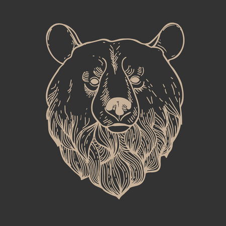 engrave: Engrave isolated vector bear.
