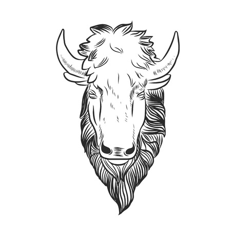 americana: Bison Mascot Head.Buffalo Head Animal Symbol.Engrave isolated vector.Hand Drawn Graphic.Isolated on white background.Great for Badge Label Sign Icon Logo Design.Quality Americana Bison Emblem.