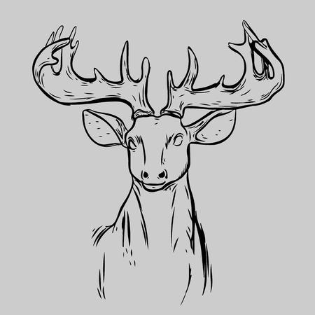 Deer Mascot Header Head Animal Symbolengrave Isolated Vector