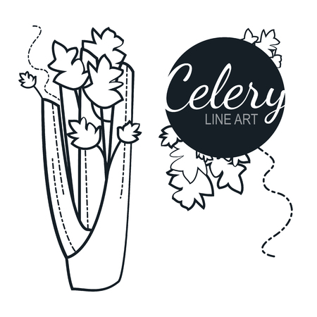 celery linear graphic design. Black and white image of vegetables. Vector illustration. Vectores