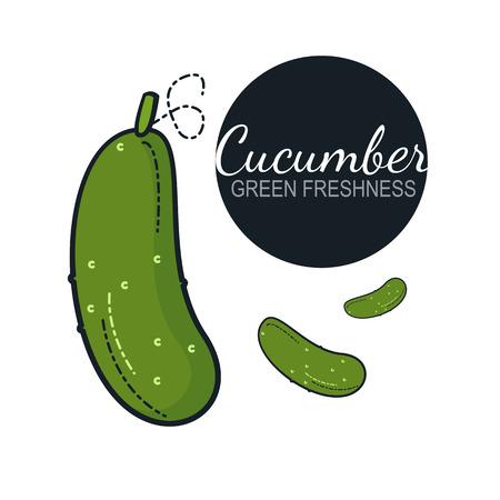 Fresh organic cucumber isolated on white background
