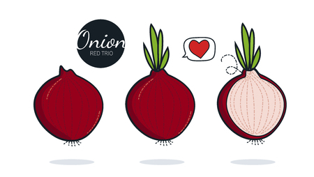 Fresh organic red onions isolated on white background