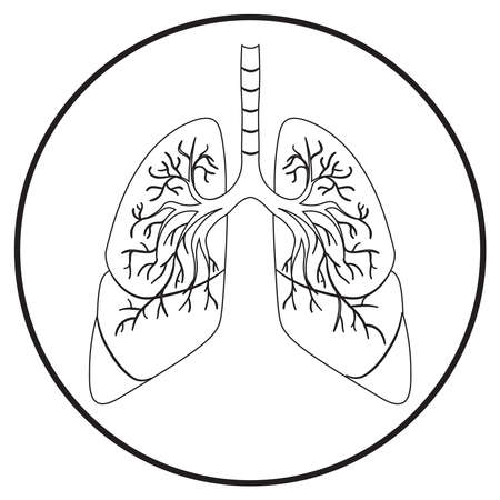 humans lung; medical icon in line art style; vector illustration, symbol for app, print or web.