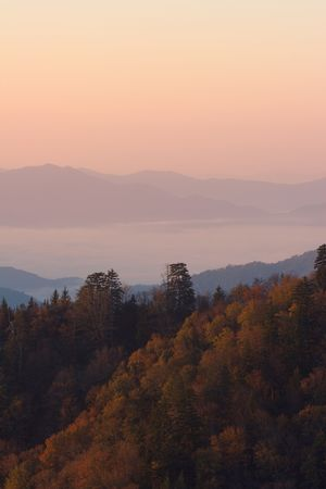ridgeline: Above the clouds in the Smoky Mountains at sunrise. Stock Photo