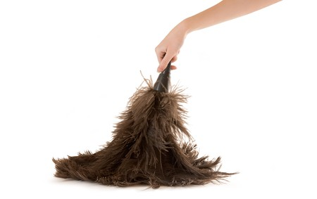 Feather Duster with Hand