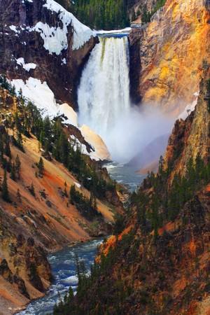 lower yellowstone falls: Lower Falls of the Yellowstone River - Yellowstone National Park.