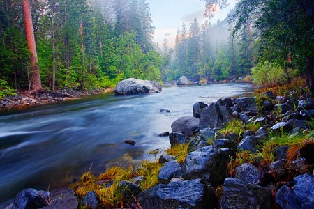 merced: The Merced River flowing through Yosemite National Park at sunrise.