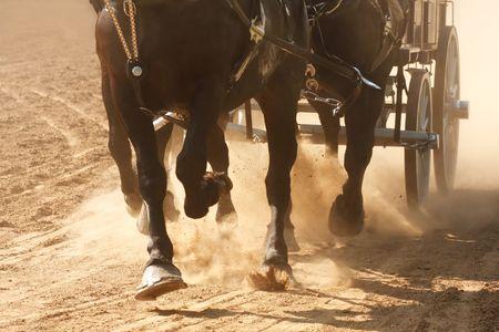 hooves: Cavalli tirando un carro attraverso un campo polveroso.