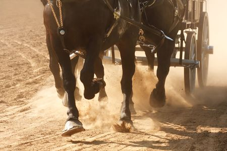 Horses pulling a wagon through a dusty field. Banco de Imagens