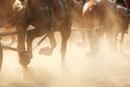 dusty: Horses pulling a wagon through a dusty field. Stock Photo