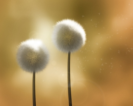 Dandelions in the Wind (computer render) photo
