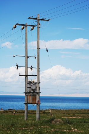 telephone pole: Closeup of telephone pole