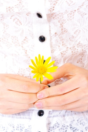 woman detail with a flower in her hands Stock Photo - 13405790