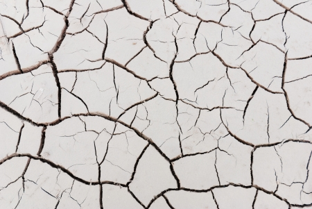 cracked land in rural areas, northern China photo
