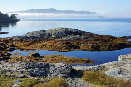 fiord: Norwegian landscape. Fiord Stock Photo