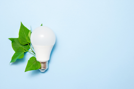 Led lamp with leaves on a blue background. Green energy efficiency concept. Top view. Stok Fotoğraf