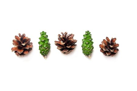 Fir cones isolated on white background closeup.