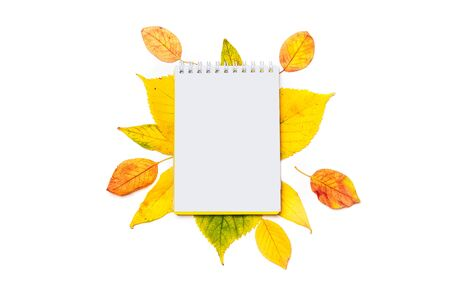 Empty notepad for writing or for a wish list on an autumn background of colored leaves isolated on white 写真素材