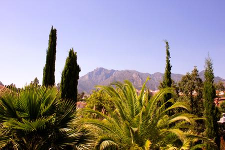 Mountain. Beautiful Spanish landscape. Marbella, Costa del Sol, Andalusia, Spain.