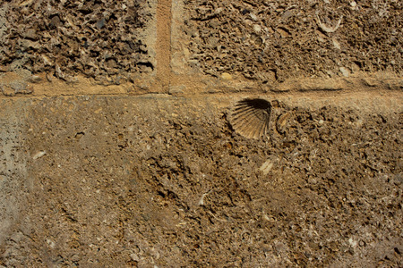 Wall. Traditional wall of Cadiz from seashells and sand. Foto de archivo