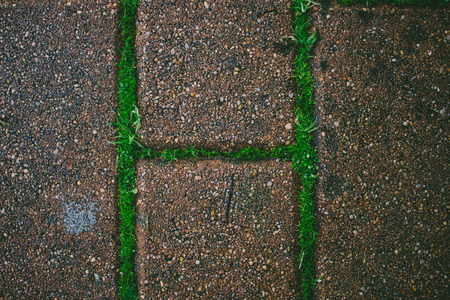 Grass and moss grows through the brick road.