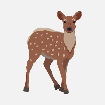 A beautiful spotted deer Bambi walks through the forest and enjoys the sun