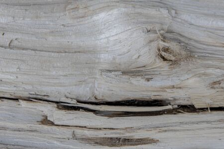 closeup texture wooden boards. The cut wood background