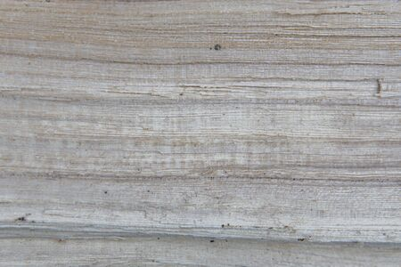 closeup photo of old wood. background and texture of the timber