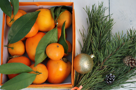 Mandarins in the box and tree with cones