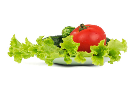 Lettuce, tomato and two cucumbers lying on the white plate photo