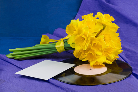 Bucket of narcissus flowers with yellow ribbon, an envelope on blue-purple background and vinyl record photo
