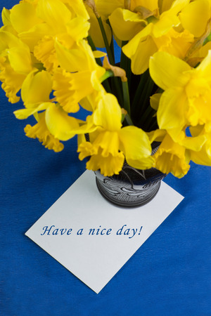 Bucket of narcissus flowers in the black vase and an envelope on blue background with text photo