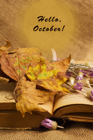 Banner with the words hello october and opened book with dry yellow maple leaves and everlasting flowers on sackcloth background