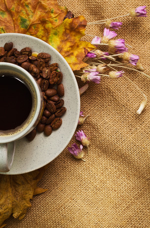 everlasting: The cup of coffee with dry yellow maple leaves and everlasting flowers on sackcloth background