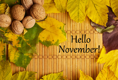 Words hello november on the rustic background with maple leaves and walnuts