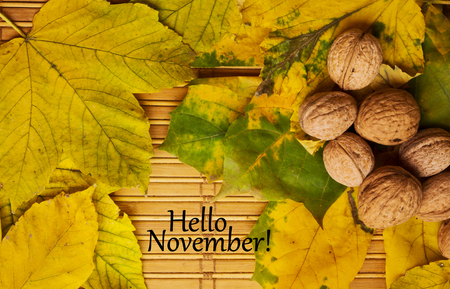 november: Words hello november on the rustic background with maple leaves and walnuts