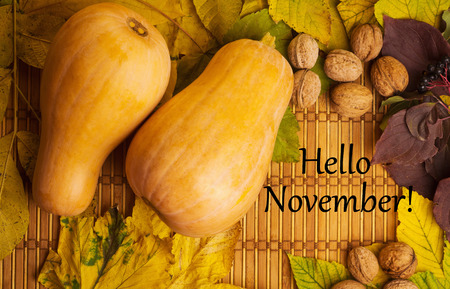 november: Words hello november on the rustic background with maple leaves, walnuts and two pumpkins