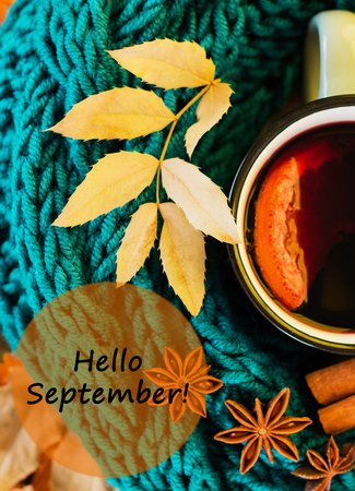 Autumn, fall leaves, hot steaming cup of glint wine and a warm blue scarf on wooden table background. Seasonal, autumnal hot wine, Autumn relaxing and still life concept with text hello september. Top view. Фото со стока