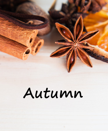 Anise, cinnamon, orange and nutmeg ingredients for preparation mulled wine, closeup on wooden background.Top view flat lay copy space with text autumn.