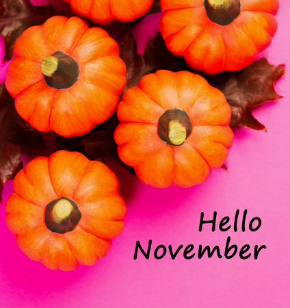 Autumnal background. Orange pumpkins with red dried oak leaves on pink background. View from above. Text hello november.