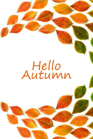 Multicolored dry autumn leaves on white background. Autumn concept. Top view, flat lay, copy space with text Hello Autumn.