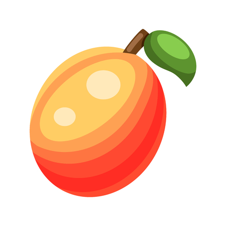 Cartoon ripe peach on a white background. Peach Icon in Color. Vector illustration