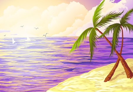 wind surfing: background illustration of tropical beach with two palms Illustration